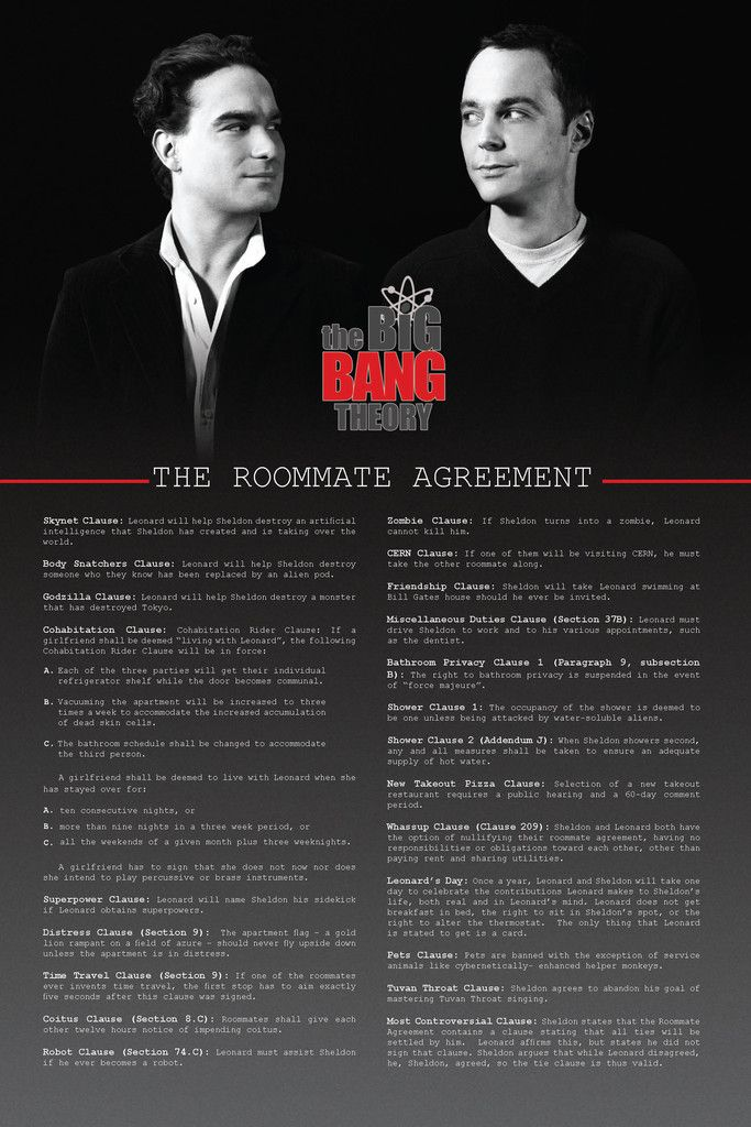 the roommate agreement big bang theory | BAZINGA !!!!! | Pinterest