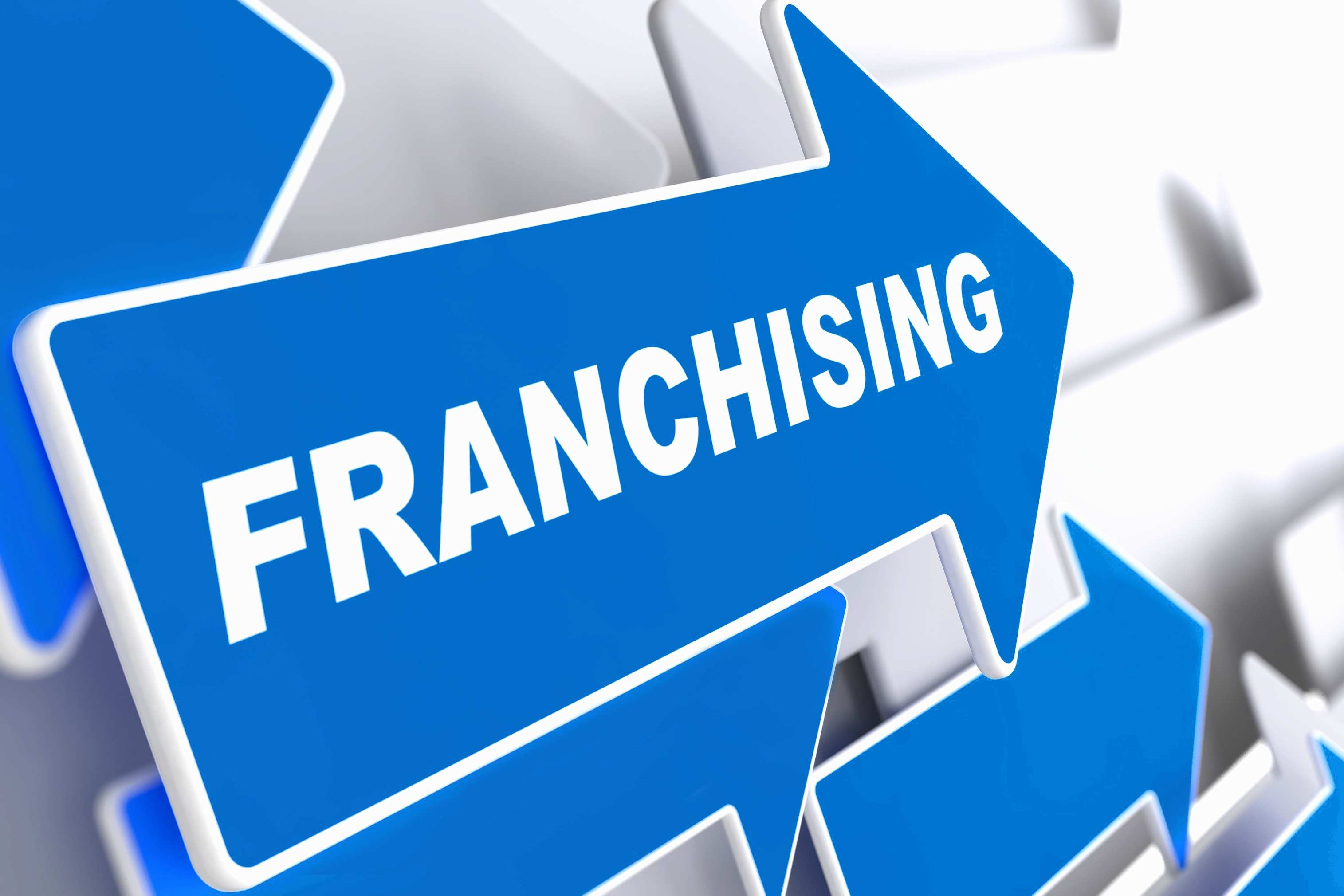 Franchise Agreement Definition whosefoods.org