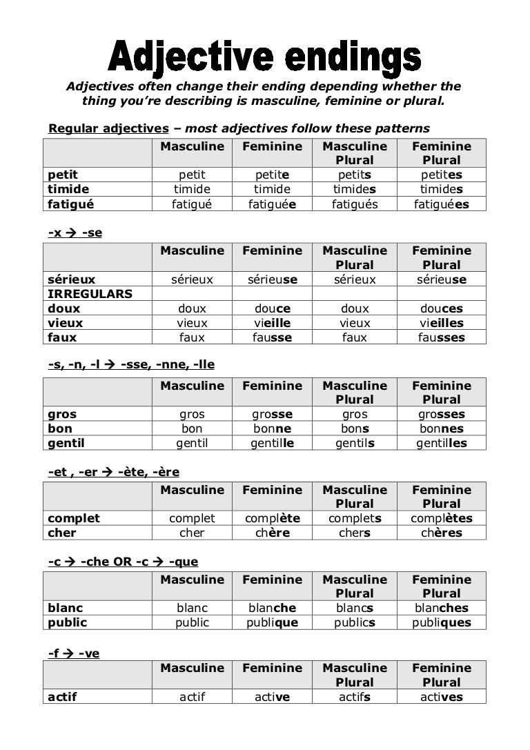 Quiz & Worksheet French Adjective Agreement | Study.com