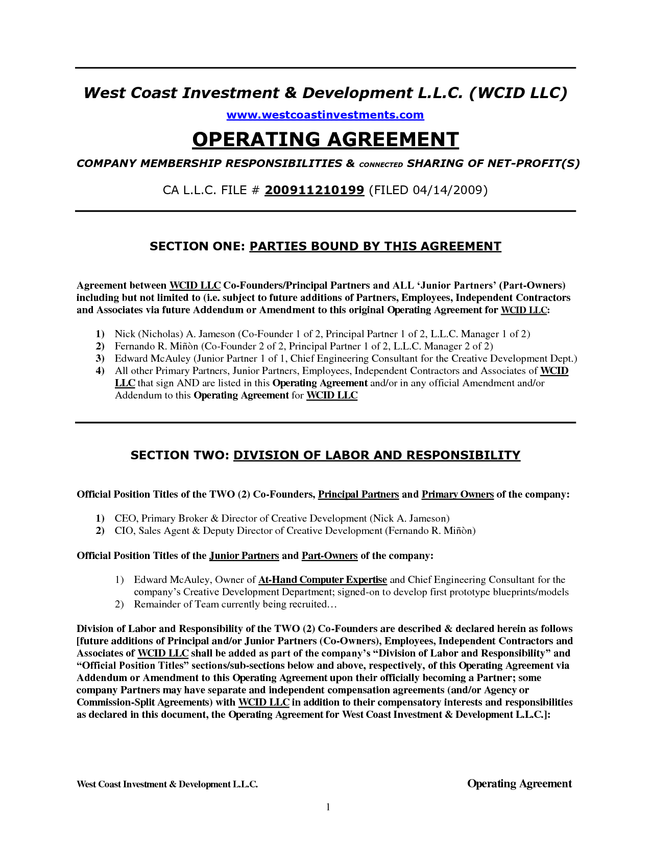 Operating Agreement Example texas llc operating agreement template
