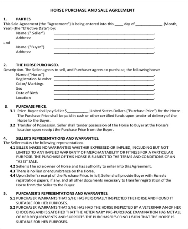 horse sale agreement template sample horse sales contract 5